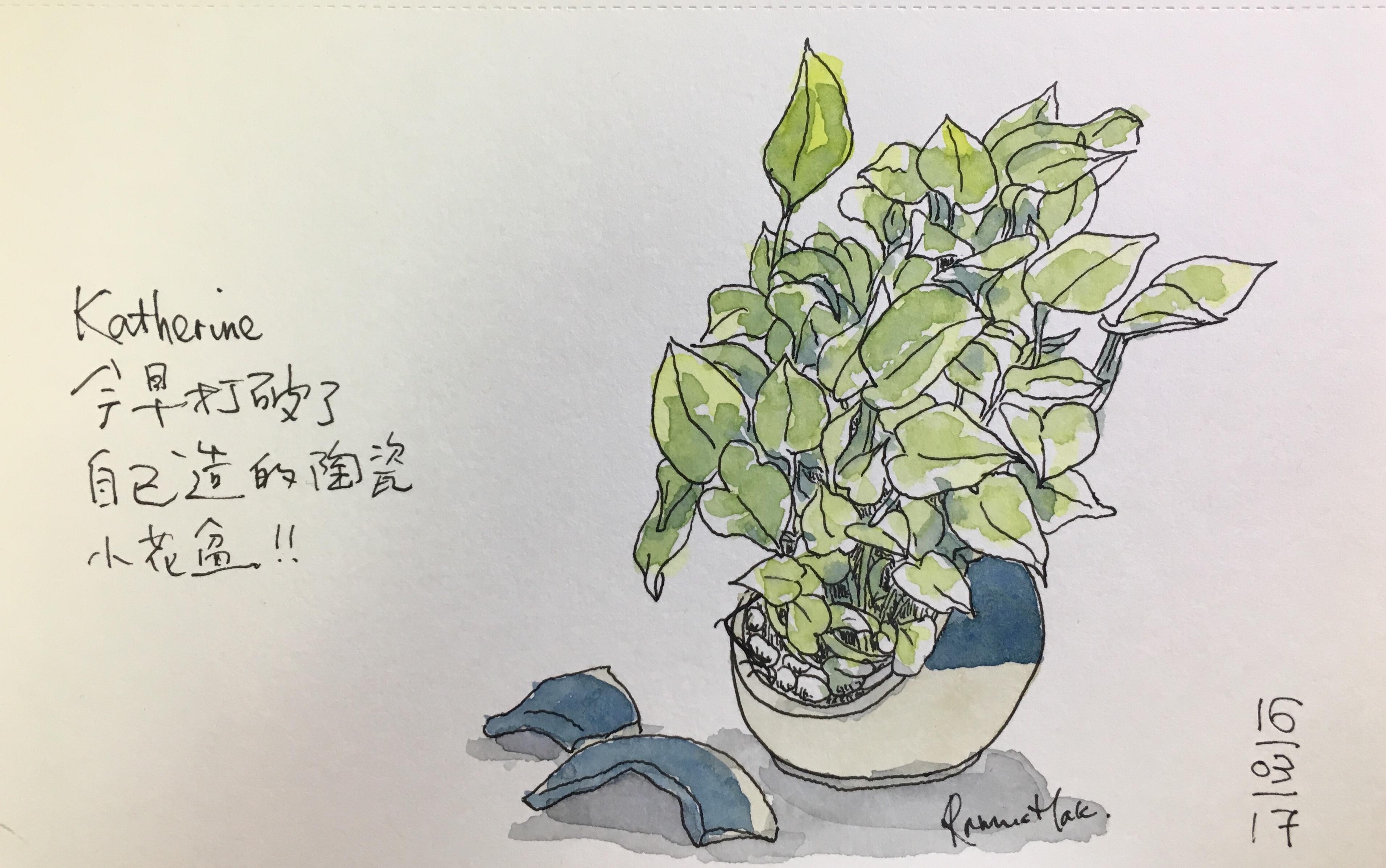 手繪:老婆的破花盆