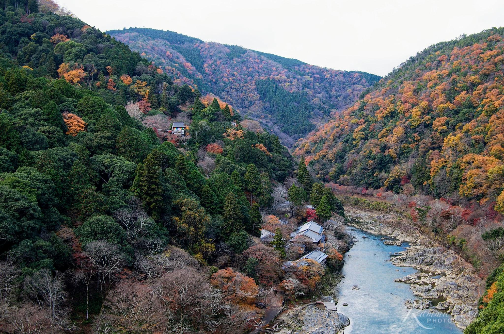 2016秋遊京都の嵯峨野嵐山覓食