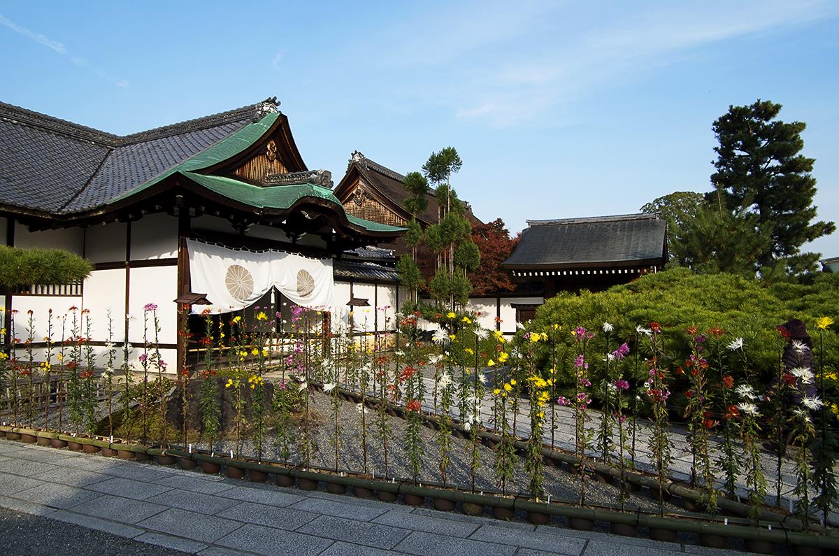2017暢遊京都、琵琶湖——大覺寺與大沢池