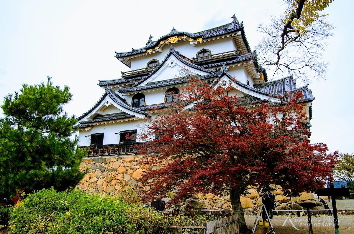 2017暢遊京都、琵琶湖——國寶級的『彥根城』與『玄宮園』